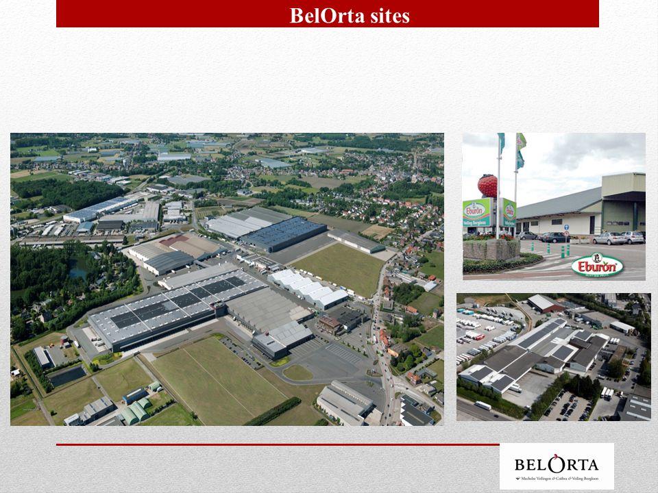 Sites BelOrta and membership location