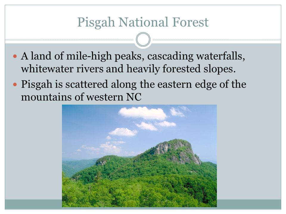 Pisgah National Forest A land of mile-high peaks, cascading waterfalls, whitewater rivers and heavily forested slopes. Pisgah is scattered along the e