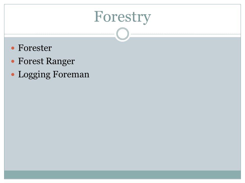 Forestry Forester Forest Ranger Logging Foreman