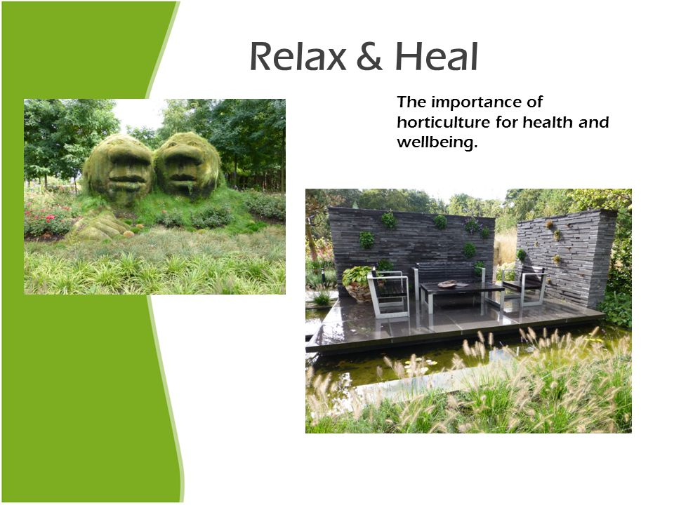 Relax & Heal The importance of horticulture for health and wellbeing.