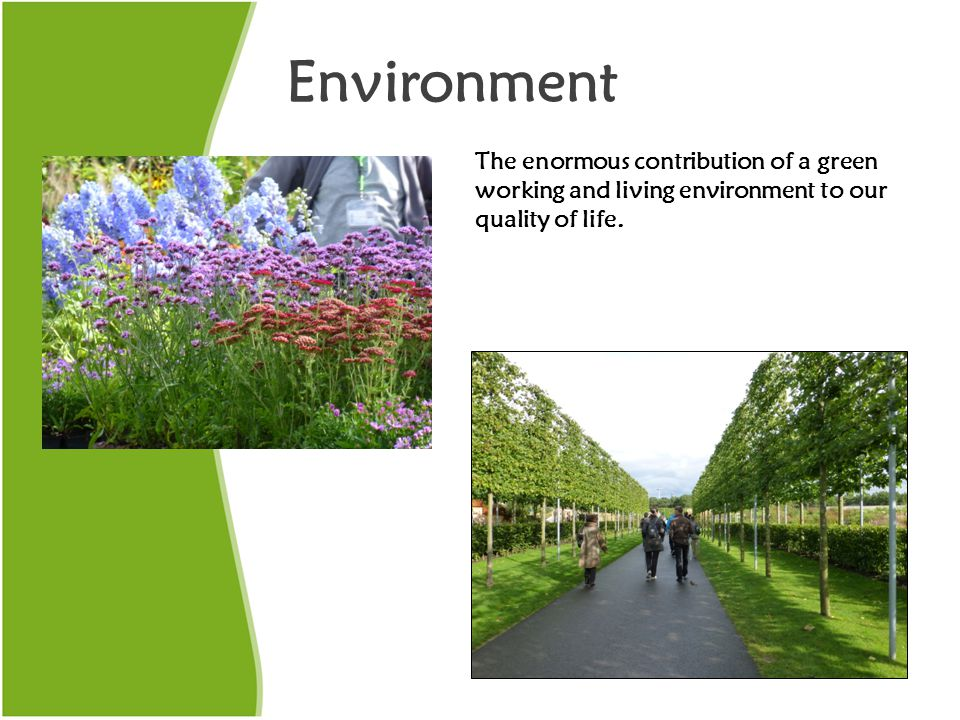 Environment The enormous contribution of a green working and living environment to our quality of life.