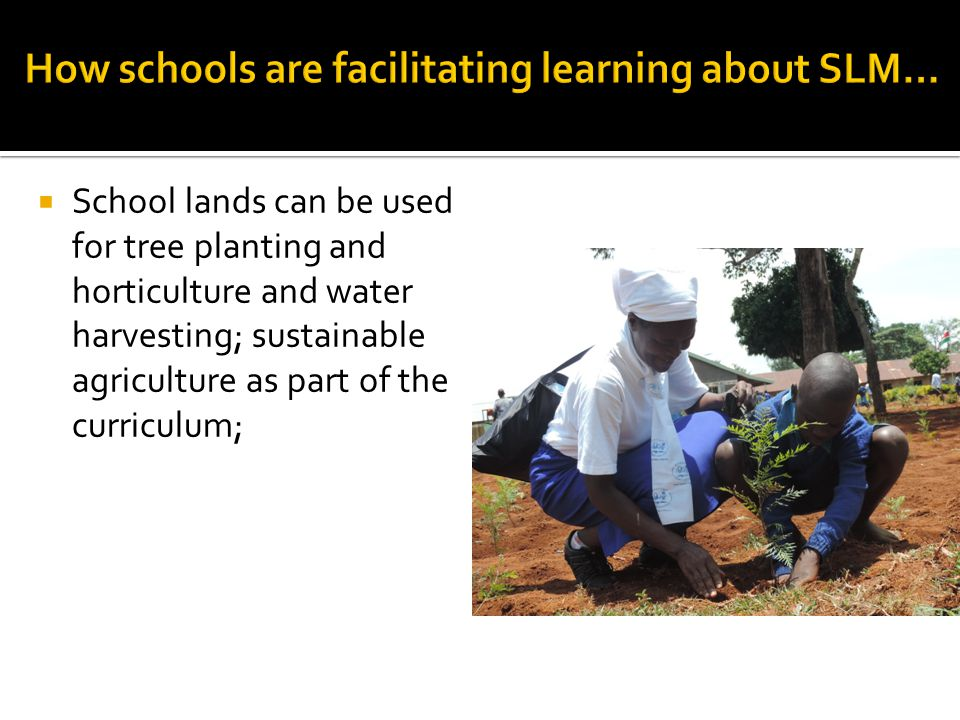  School lands can be used for tree planting and horticulture and water harvesting; sustainable agriculture as part of the curriculum;