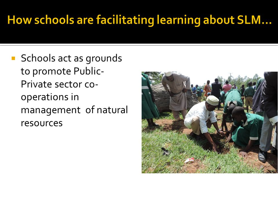  Schools act as grounds to promote Public- Private sector co- operations in management of natural resources