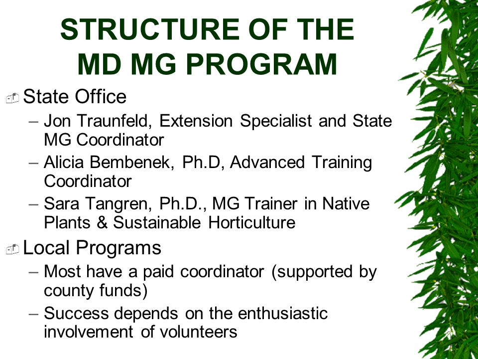 STRUCTURE OF THE MD MG PROGRAM  State Office –Jon Traunfeld, Extension Specialist and State MG Coordinator –Alicia Bembenek, Ph.D, Advanced Training