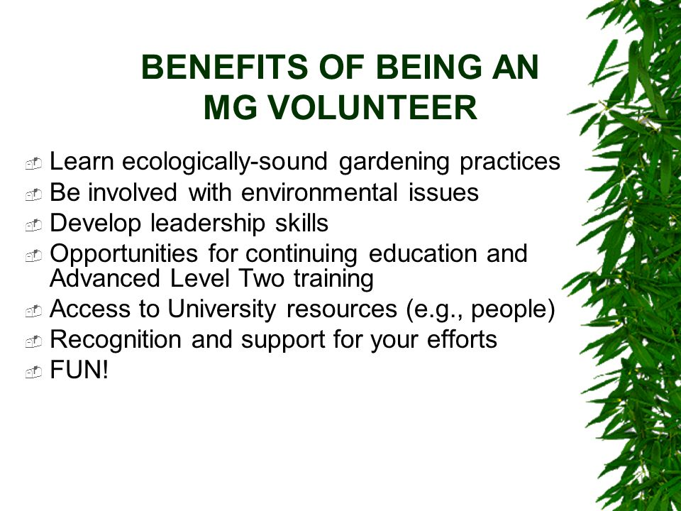BENEFITS OF BEING AN MG VOLUNTEER  Learn ecologically-sound gardening practices  Be involved with environmental issues  Develop leadership skills 