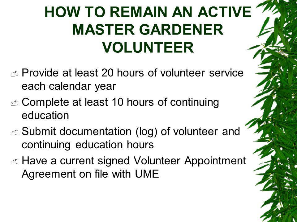 HOW TO REMAIN AN ACTIVE MASTER GARDENER VOLUNTEER  Provide at least 20 hours of volunteer service each calendar year  Complete at least 10 hours of