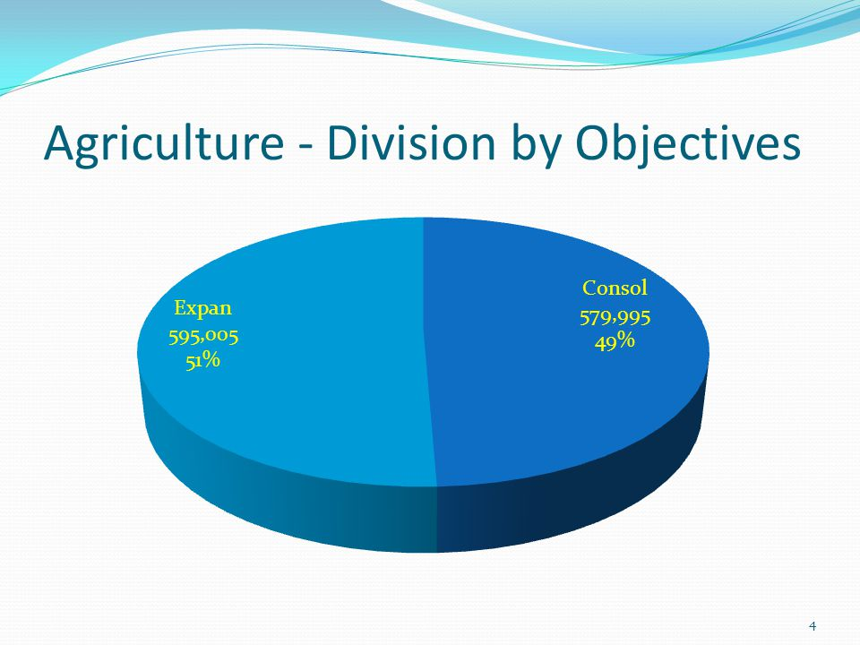 Agriculture - Division by Objectives 4
