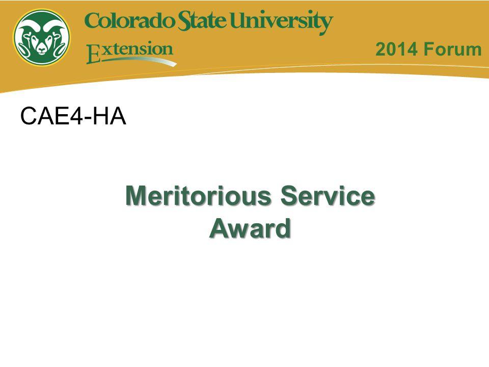 Meritorious Service Award CAE4-HA