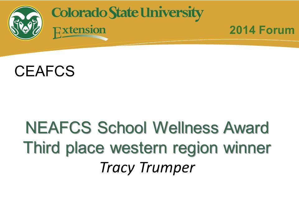 NEAFCS School Wellness Award Third place western region winner Tracy Trumper CEAFCS 2014 Forum