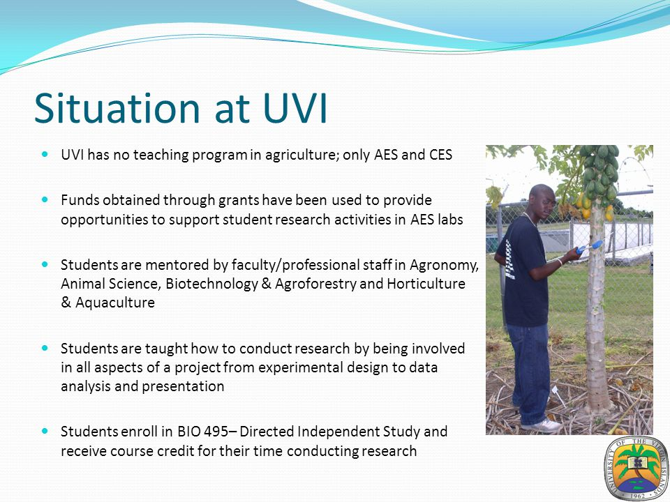 Situation at UVI UVI has no teaching program in agriculture; only AES and CES Funds obtained through grants have been used to provide opportunities to support student research activities in AES labs Students are mentored by faculty/professional staff in Agronomy, Animal Science, Biotechnology & Agroforestry and Horticulture & Aquaculture Students are taught how to conduct research by being involved in all aspects of a project from experimental design to data analysis and presentation Students enroll in BIO 495– Directed Independent Study and receive course credit for their time conducting research