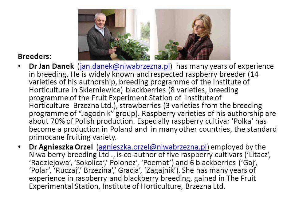 Breeders: Dr Jan Danek (jan.danek@niwabrzezna.pl) has many years of experience in breeding. He is widely known and respected raspberry breeder (14 var