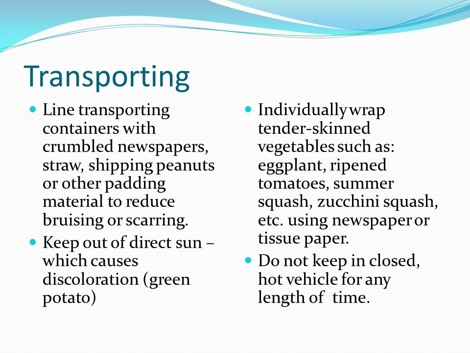 Transporting Line transporting containers with crumbled newspapers, straw, shipping peanuts or other padding material to reduce bruising or scarring.