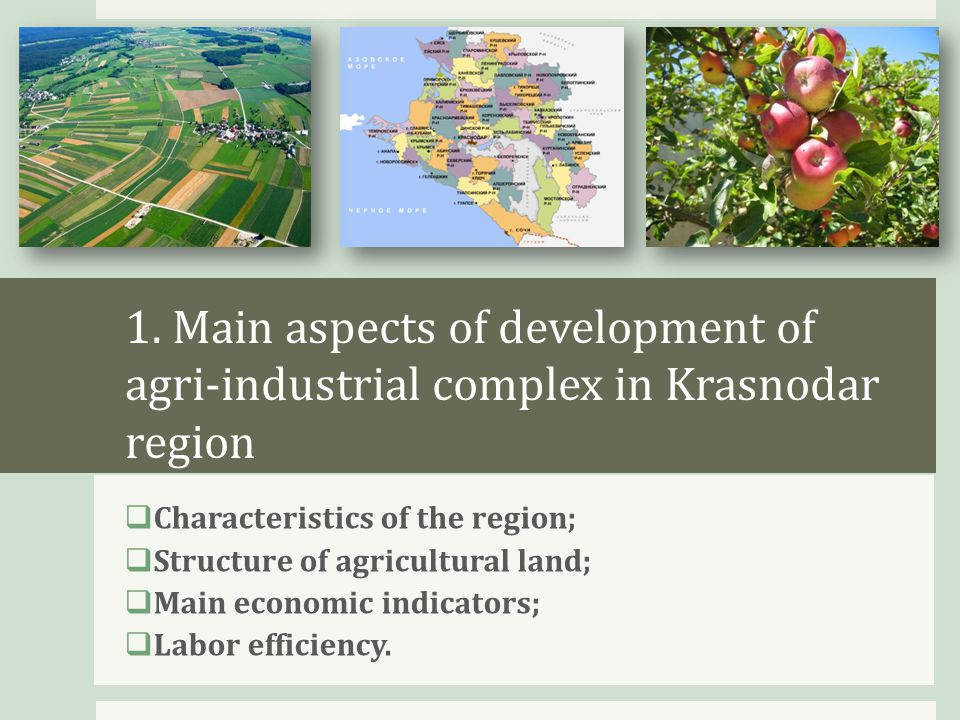 Krasnodar region– the largest agri- industrial region of Russia  The southernmost region of Russia;  Region with the most favorable weather conditions for agriculture in Russia;  3,8 mln.