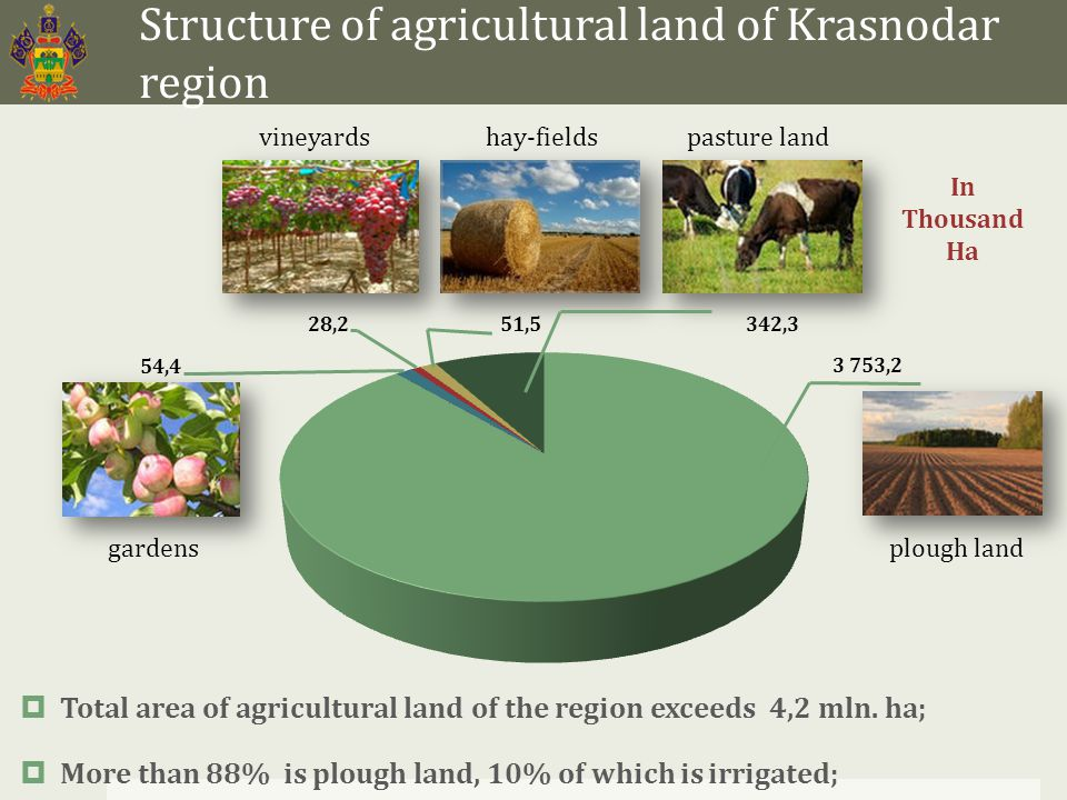 Volume and structure of products of livestock sector  31% of products of agri-industrial complex;  More than 32,7 billion roubles Gross Regional Product;  More than 1,2 mln.