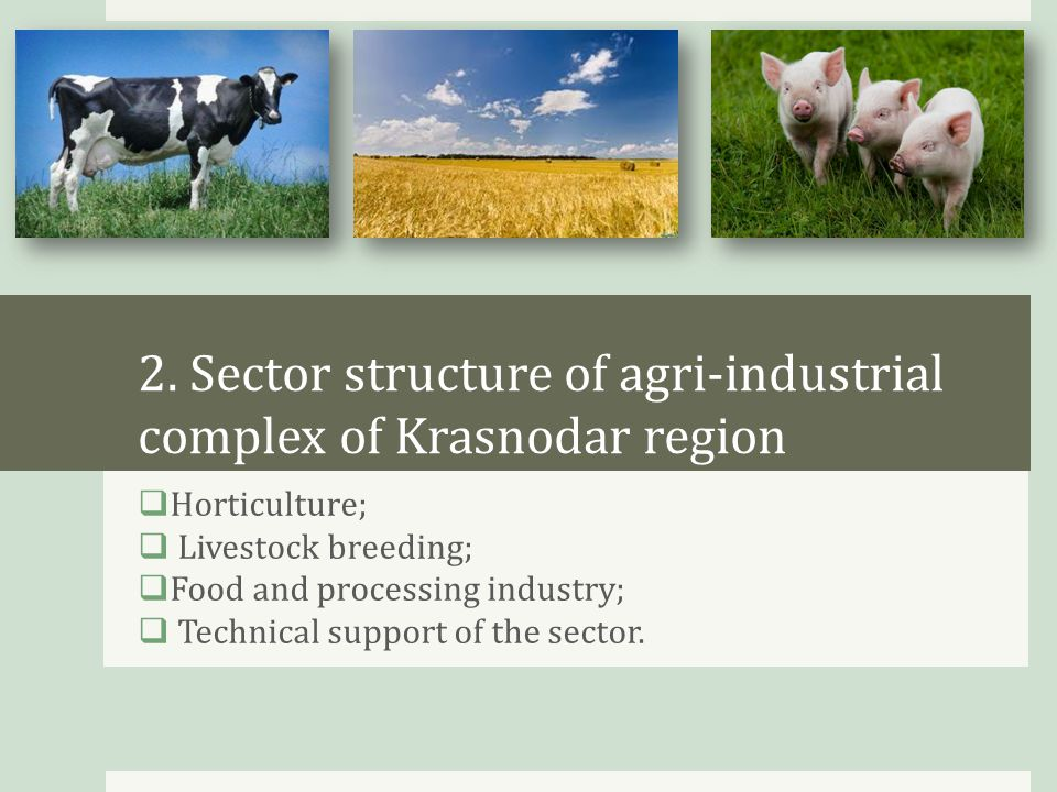 2.1 Horticulture  Horticulture sector of the region on a national scale;  Structure of cultivated areas;  Volume and structure of horticulture products.