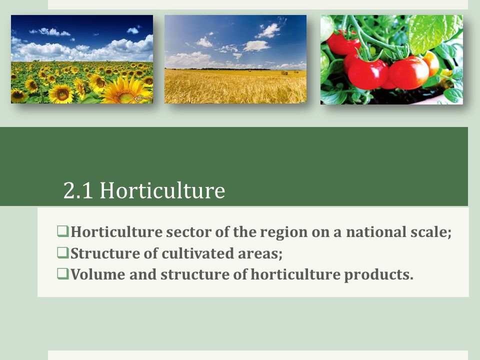 2.4 Technical support of the sector  Quantity and structure of agricultural machinery;  Main countries – exporters of agricultural machinery to Krasnodar region;  Main companies-exporters from the USA.