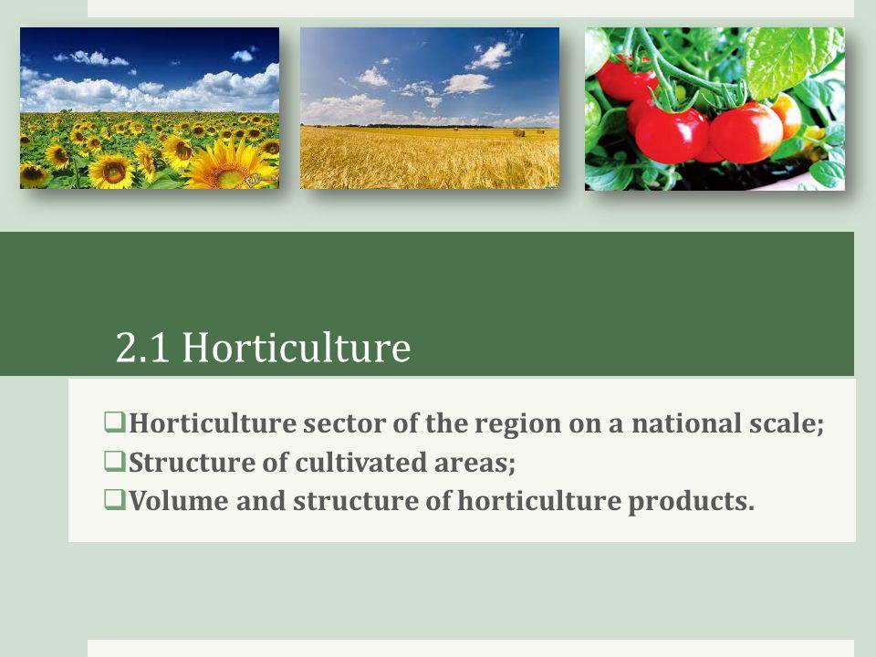Horticulture sector of Krasnodar region on a national scale  100% tea and subtropical cultures ;  78% rice;  55% grape;  45% corn;  32% sugar beet;  18% sunflower;  16% grain.