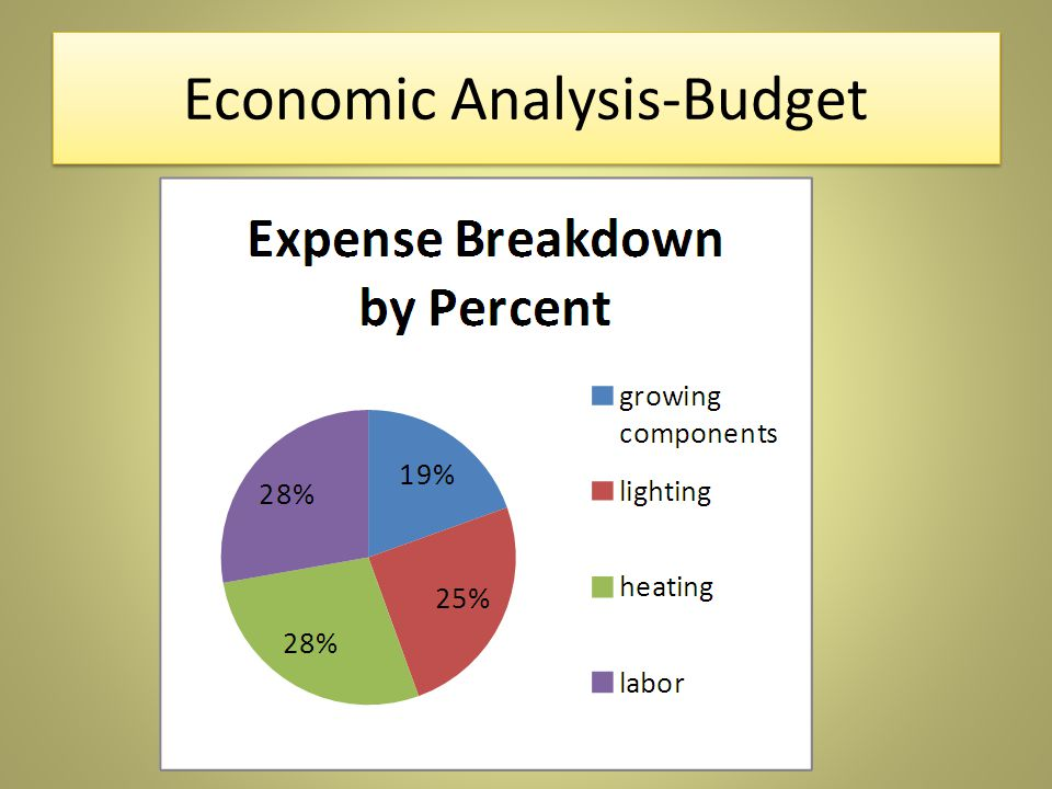 Economic Analysis-Budget