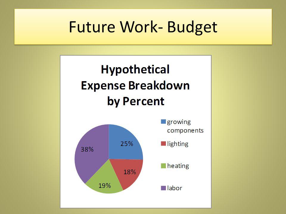 Future Work- Budget