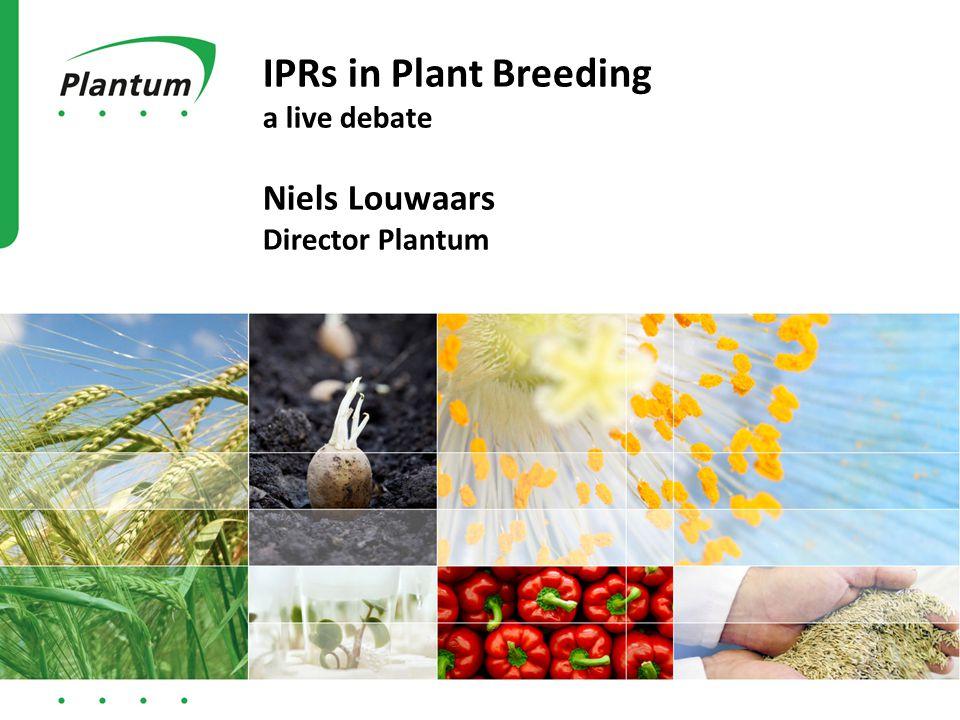 IPRs in Plant Breeding a live debate Niels Louwaars Director Plantum