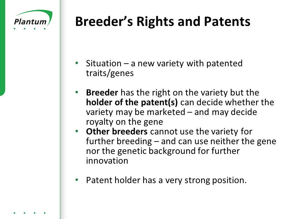 Situation – a new variety with patented traits/genes Breeder has the right on the variety but the holder of the patent(s) can decide whether the variety may be marketed – and may decide royalty on the gene Other breeders cannot use the variety for further breeding – and can use neither the gene nor the genetic background for further innovation Patent holder has a very strong position.