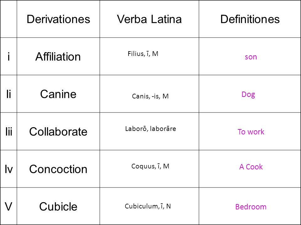 DerivationesVerba LatinaDefinitiones iAffiliation IiCanine IiiCollaborate IvConcoction VCubicle Filius, ī, M son Canis, -is, M Dog Laborō, laborāre To work Coquus, ī, M A Cook Cubiculum, ī, N Bedroom