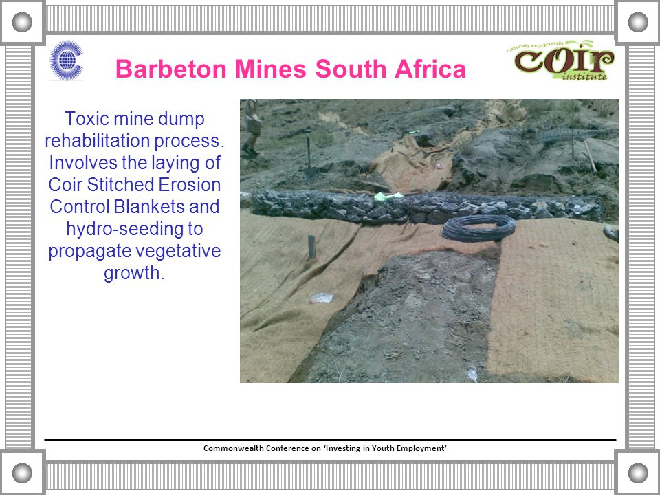 Commonwealth Conference on 'Investing in Youth Employment' Barbeton Mines South Africa Toxic mine dump rehabilitation process.