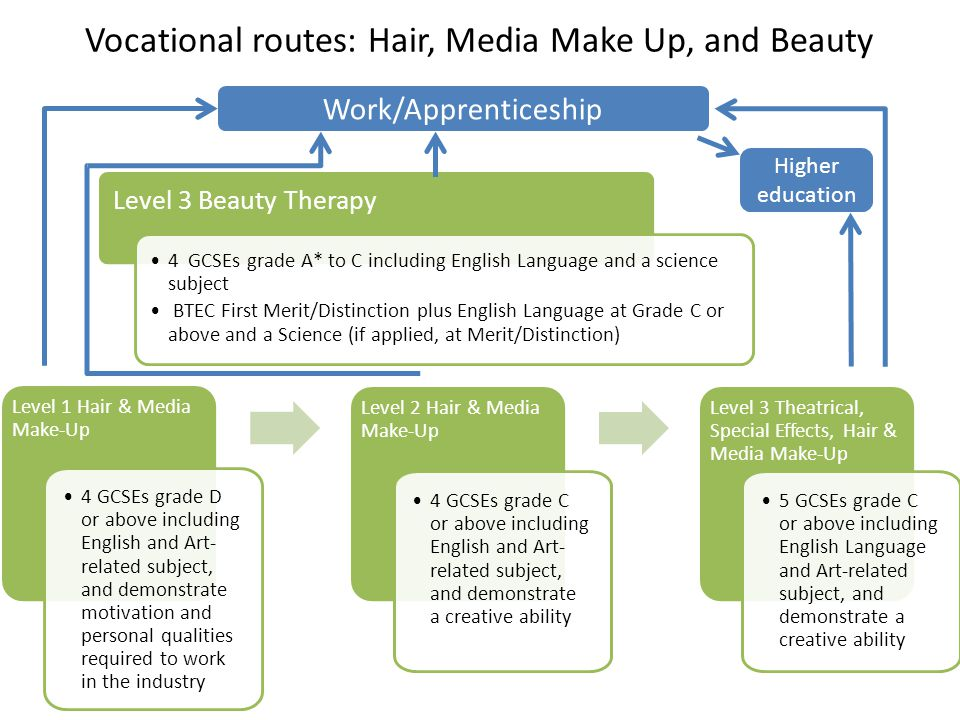 Vocational routes: Hair, Media Make Up, and Beauty Level 3 Beauty Therapy 4 GCSEs grade A* to C including English Language and a science subject BTEC First Merit/Distinction plus English Language at Grade C or above and a Science (if applied, at Merit/Distinction) Level 1 Hair & Media Make-Up 4 GCSEs grade D or above including English and Art- related subject, and demonstrate motivation and personal qualities required to work in the industry Level 2 Hair & Media Make-Up 4 GCSEs grade C or above including English and Art- related subject, and demonstrate a creative ability Level 3 Theatrical, Special Effects, Hair & Media Make-Up 5 GCSEs grade C or above including English Language and Art-related subject, and demonstrate a creative ability Work/Apprenticeship Higher education