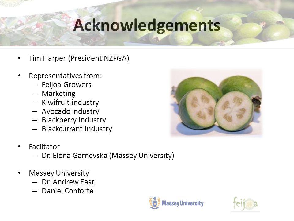Acknowledgements Tim Harper (President NZFGA) Representatives from: – Feijoa Growers – Marketing – Kiwifruit industry – Avocado industry – Blackberry industry – Blackcurrant industry Faciltator – Dr.