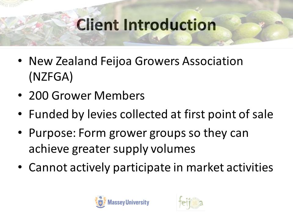 Client Introduction New Zealand Feijoa Growers Association (NZFGA) 200 Grower Members Funded by levies collected at first point of sale Purpose: Form grower groups so they can achieve greater supply volumes Cannot actively participate in market activities