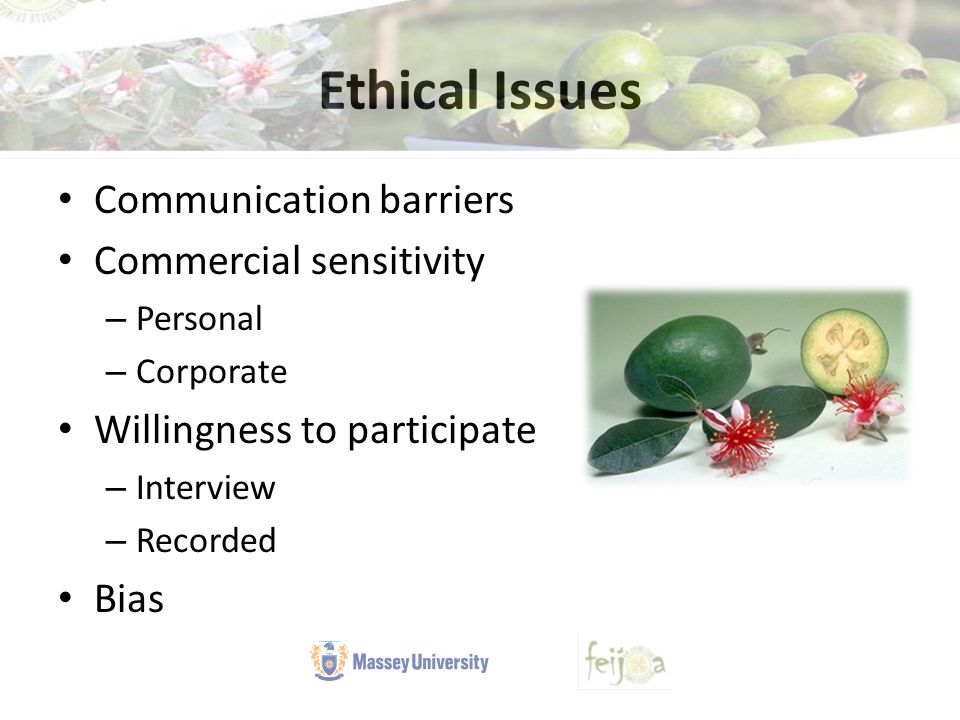 Ethical Issues Communication barriers Commercial sensitivity – Personal – Corporate Willingness to participate – Interview – Recorded Bias