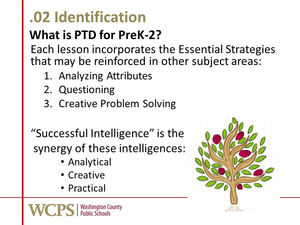 .02 Identification What is PTD for PreK-2.