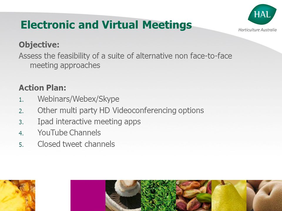 Electronic and Virtual Meetings Objective: Assess the feasibility of a suite of alternative non face-to-face meeting approaches Action Plan: 1.
