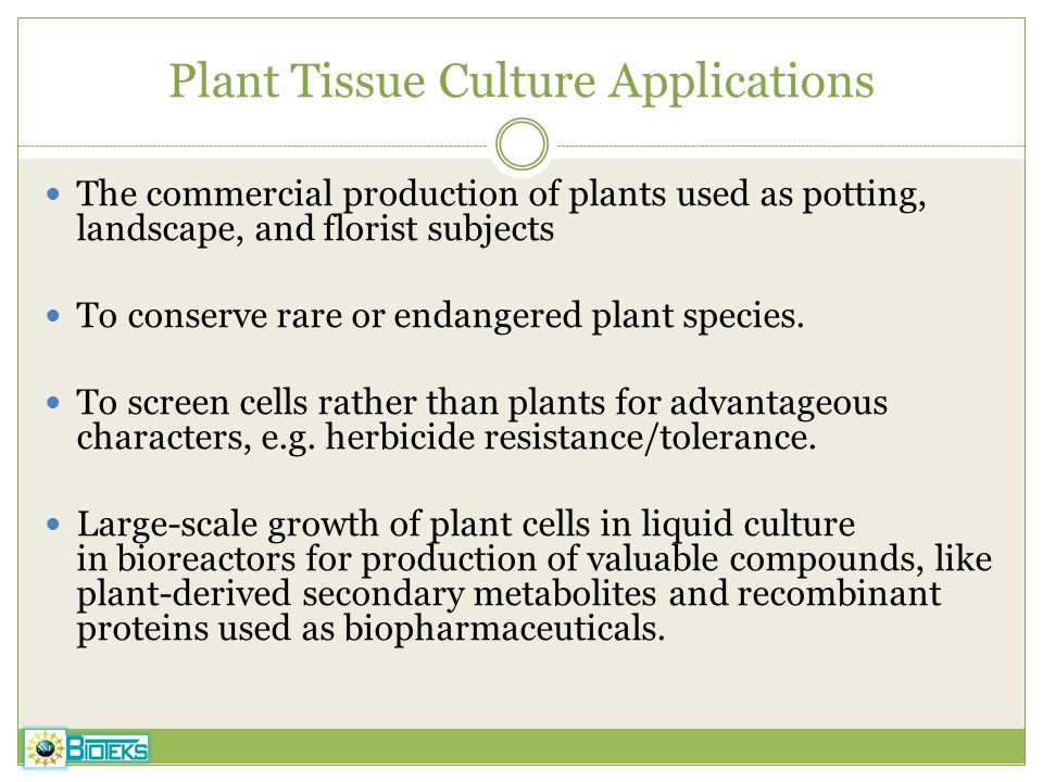 Plant Tissue Culture Applications The commercial production of plants used as potting, landscape, and florist subjects To conserve rare or endangered