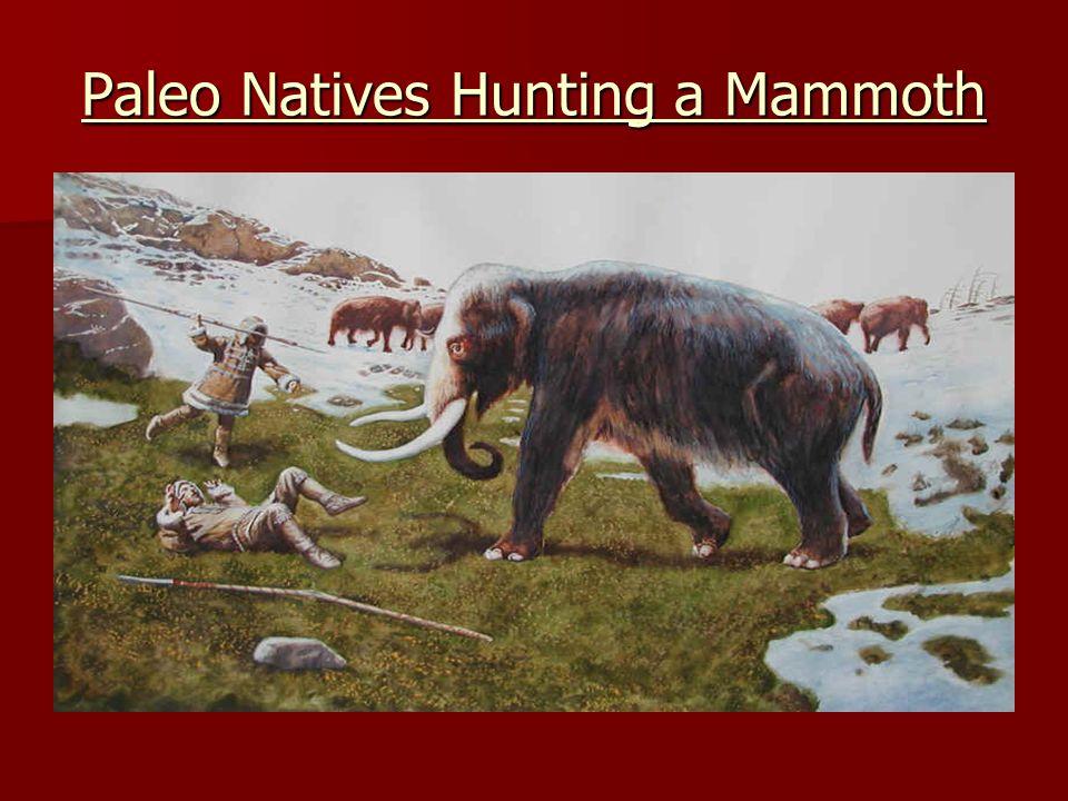 Paleo Natives Hunting a Mammoth