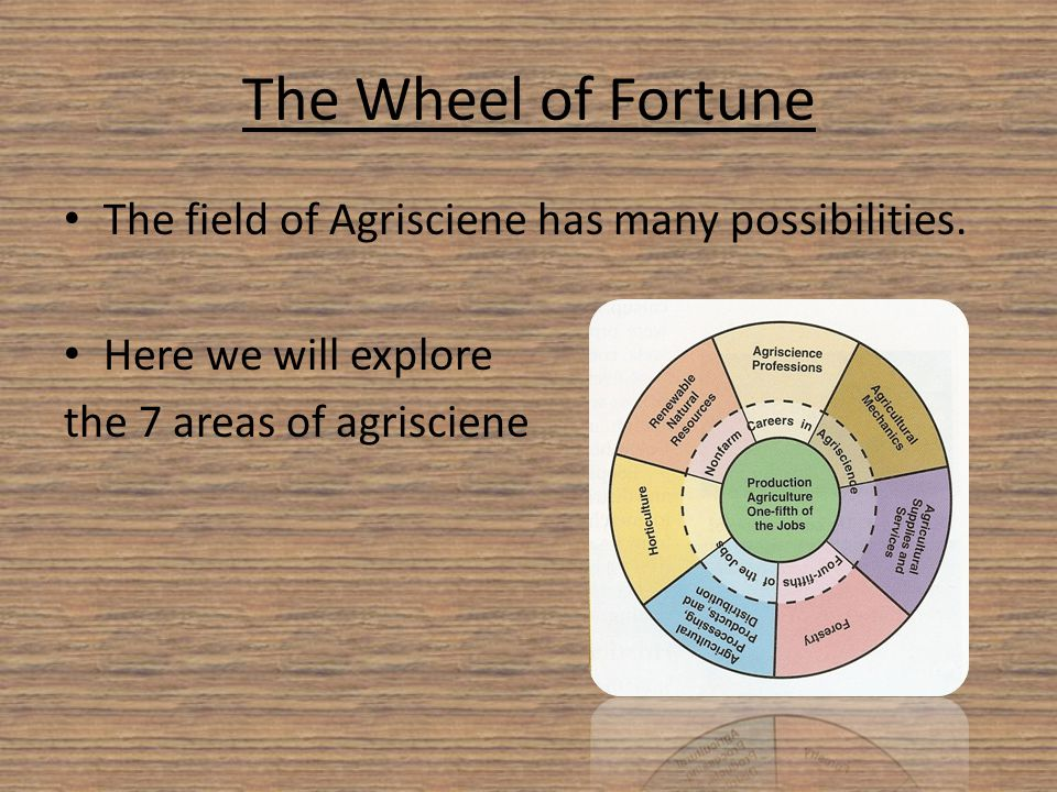 The Wheel of Fortune The field of Agrisciene has many possibilities. Here we will explore the 7 areas of agrisciene
