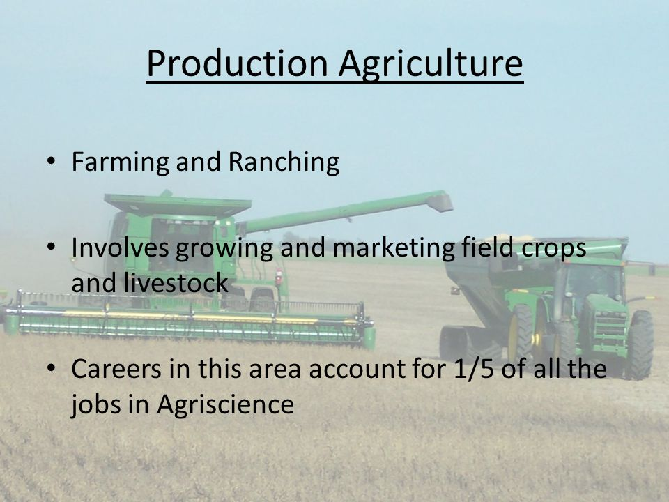 Production Agriculture Farming and Ranching Involves growing and marketing field crops and livestock Careers in this area account for 1/5 of all the j