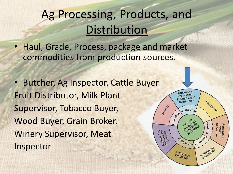 Ag Processing, Products, and Distribution Haul, Grade, Process, package and market commodities from production sources. Butcher, Ag Inspector, Cattle