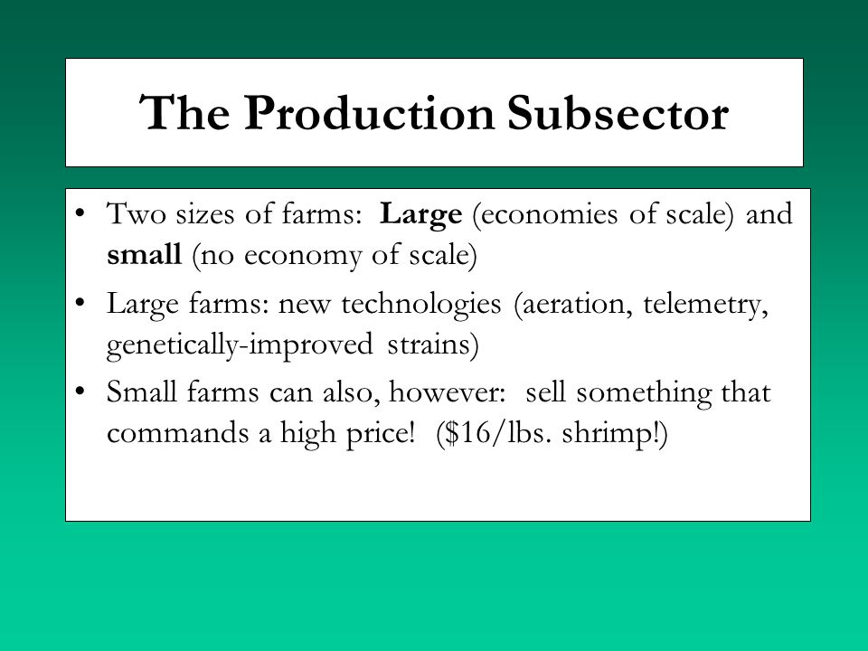 The Production Subsector Two sizes of farms: Large (economies of scale) and small (no economy of scale) Large farms: new technologies (aeration, telem