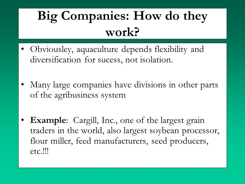 Big Companies: How do they work? Obviousley, aquaculture depends flexibility and diversification for sucess, not isolation. Many large companies have