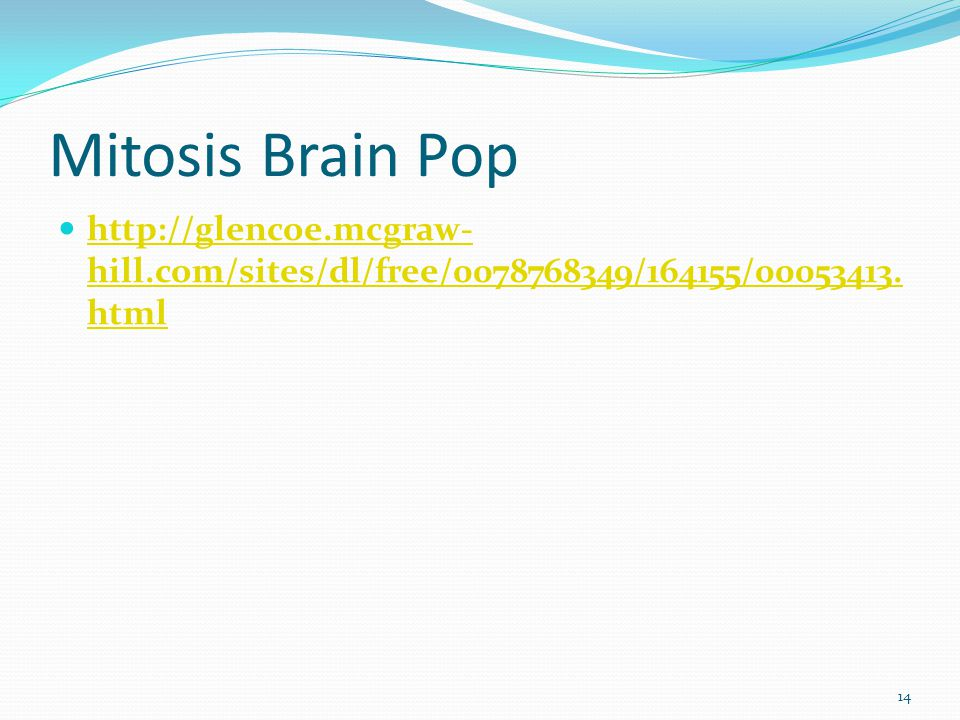 Mitosis Brain Pop http://glencoe.mcgraw- hill.com/sites/dl/free/0078768349/164155/00053413. html http://glencoe.mcgraw- hill.com/sites/dl/free/0078768