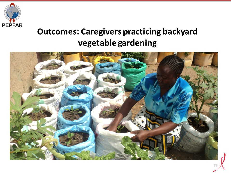 Outcomes: Caregivers practicing backyard vegetable gardening 11