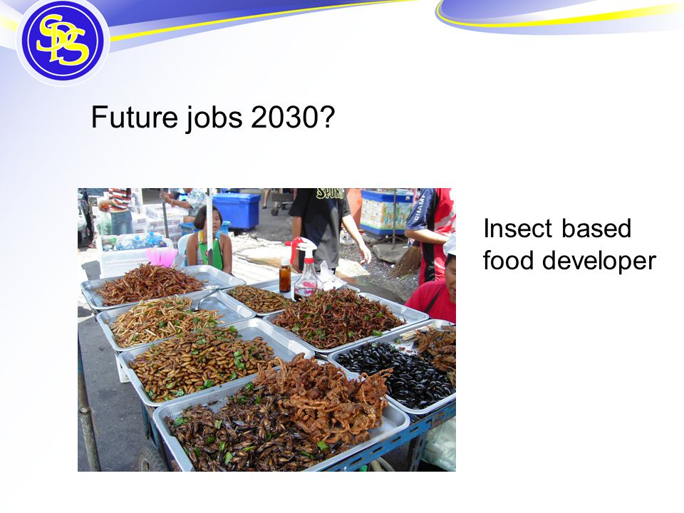 Future jobs 2030 Insect based food developer