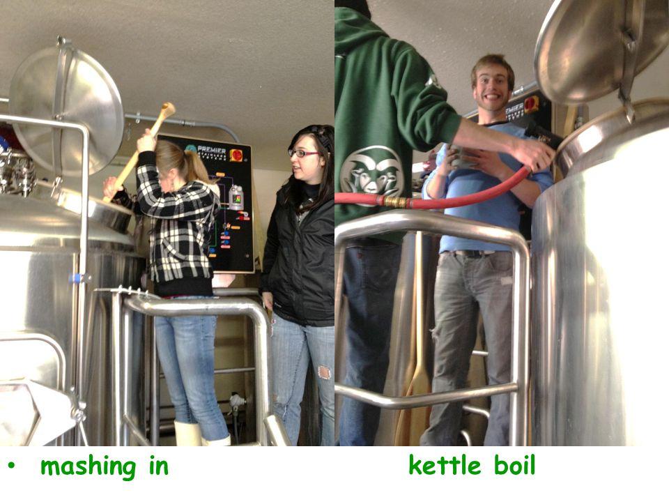 mashing inkettle boil