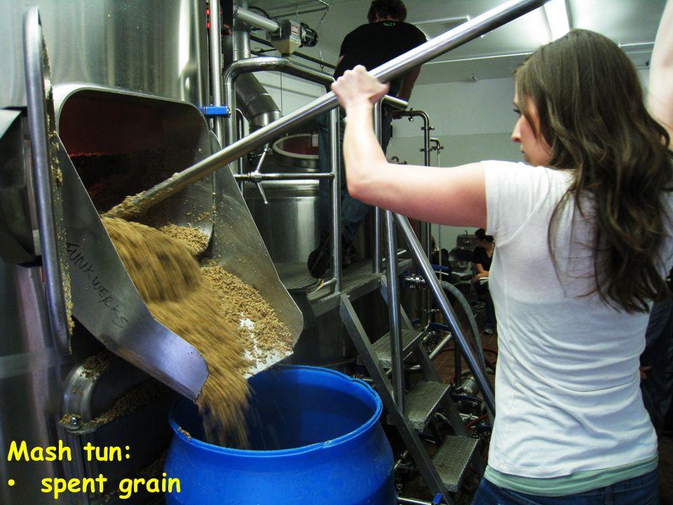Mash tun: spent grain