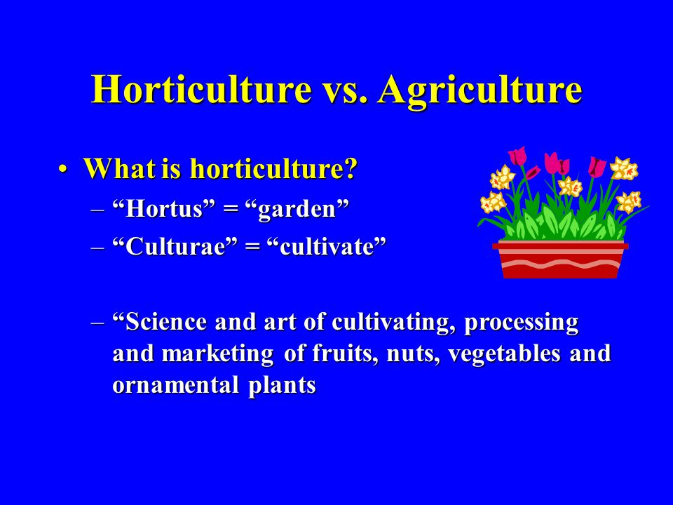 "Horticulture vs. Agriculture What is horticulture?What is horticulture? –""Hortus"" = ""garden"" –""Culturae"" = ""cultivate"" –""Science and art of cultivatin"