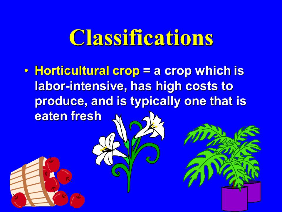 Classifications Horticultural crop= a crop which is labor-intensive, has high costs to produce, and is typically one that is eaten freshHorticultural