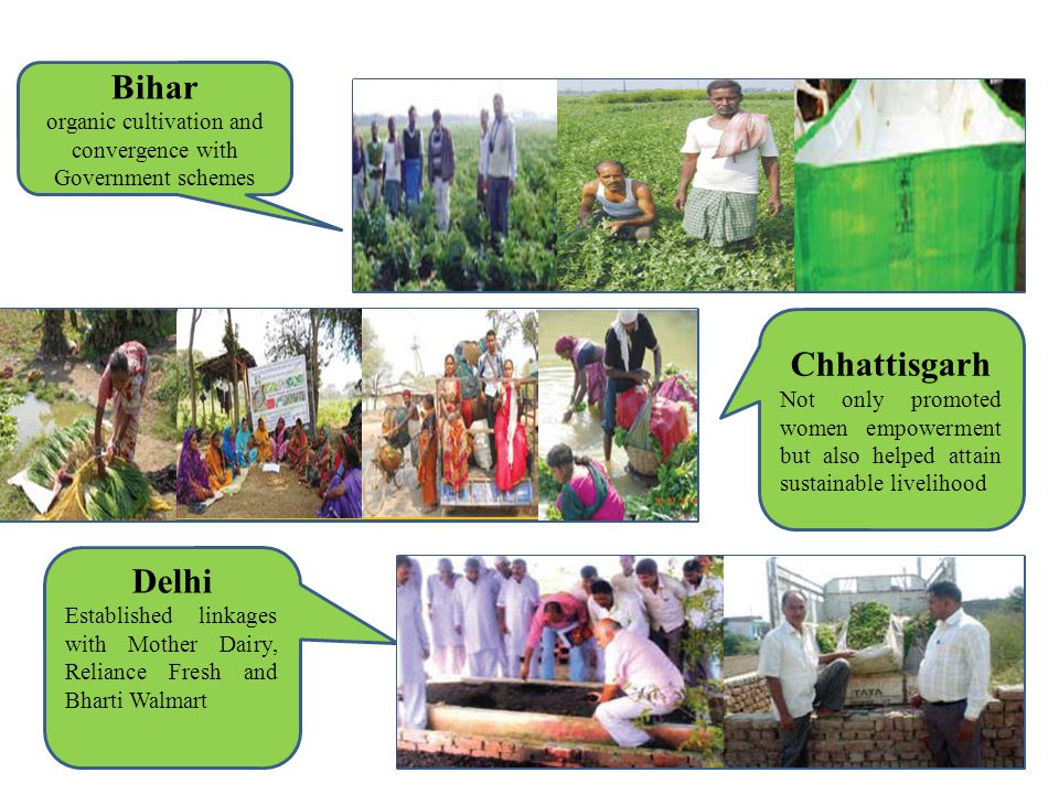 Bihar organic cultivation and convergence with Government schemes Chhattisgarh Not only promoted women empowerment but also helped attain sustainable