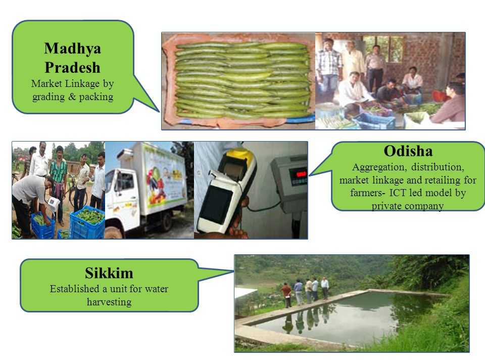 Madhya Pradesh Market Linkage by grading & packing Odisha Aggregation, distribution, market linkage and retailing for farmers- ICT led model by privat