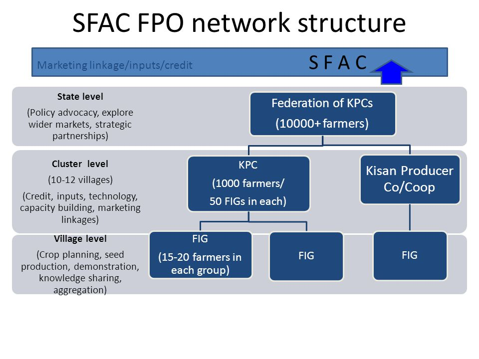 SFAC FPO network structure Village level (Crop planning, seed production, demonstration, knowledge sharing, aggregation) Cluster level (10-12 villages